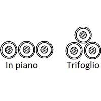 trifoglio_evidenza
